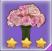 蔷薇手捧花