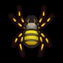 クモ.png