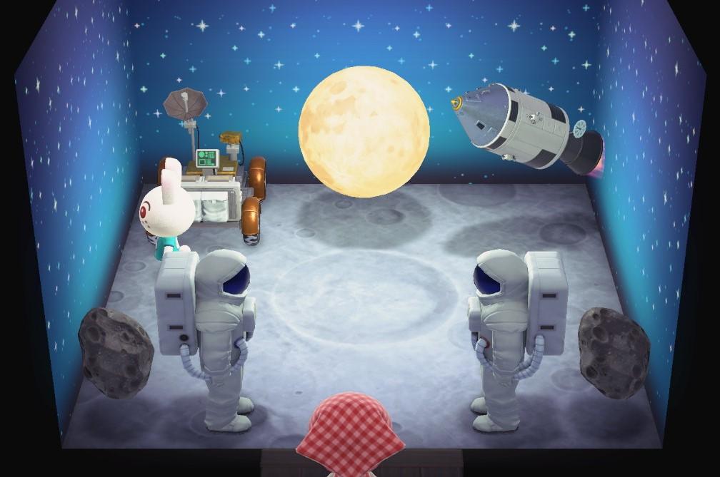 月兔的家装.jpg