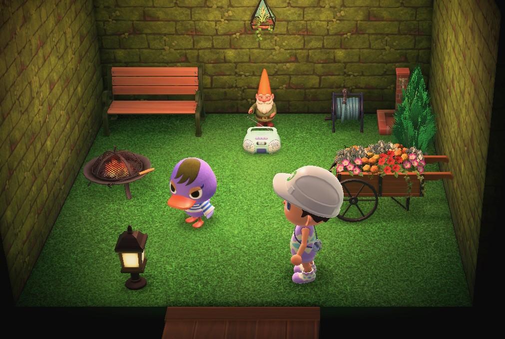 苏米的家装.jpg