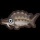 チョウザメ.png