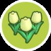 植物图鉴.png