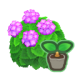 SeedHydrangeaPink.png