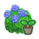 SeedHydrangeaBlue.png