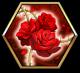 盛绽的蔷薇.png