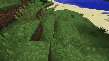 Tall grass in Beta 1.6.png