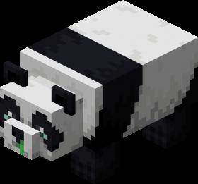 Weak Panda.png