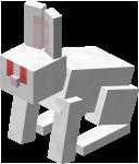 Albino Rabbit JE1 BE1.png