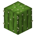 Cactus Revision 4.png