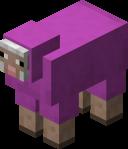Magenta Sheep.png
