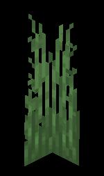 Tall Grass.png