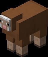 Brown Sheep.png