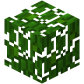 Jungle Leaves Revision 1.png