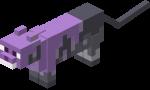 Purple Cat.png
