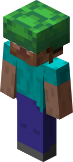 Steve in turtle shell.png