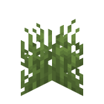 Plains Grass.png