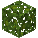 Jungle Leaves BE.png