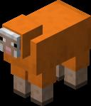 Orange Sheep.png