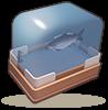 鲜鱼礼盒.png