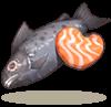 鲑鱼抱枕.png