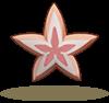 粉红海星.png