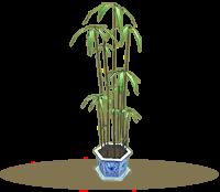 水竹盆栽.png