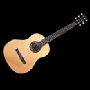 装备图标 六弦吉他.png
