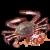 梭子蟹.png