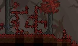 猩红之地中的多刺灌木