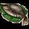 物品·鲫鱼.png