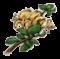 物品·金银花.png