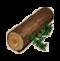 物品·松木.png