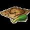 物品·青菜种子.png