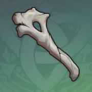 脆弱的骨片.png