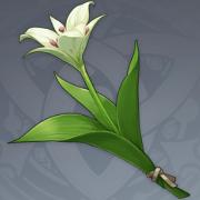 塞西莉亚花.png