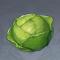 卷心菜.png