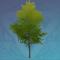 「暖叶篝火树」.png