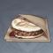 奇怪的摩拉肉.png