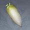 白萝卜.png