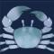 海蓝蟹图标.png