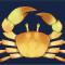 黄金蟹图标.png