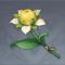 特别甜的甜甜花.png