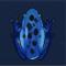 蓝蛙图标.png