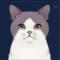 灰雪猫图标.png