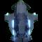 怪物 海5-灯乌贼 头像.png