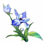道具 鸢尾花.png